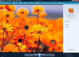 Windows Live Photo Gallery screenshot 1
