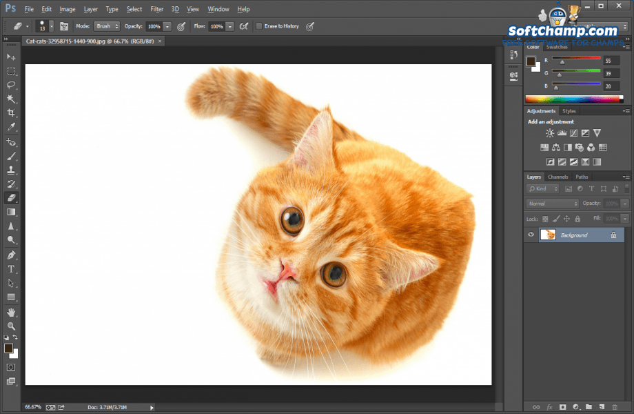 Adobe Photoshop Image Preview