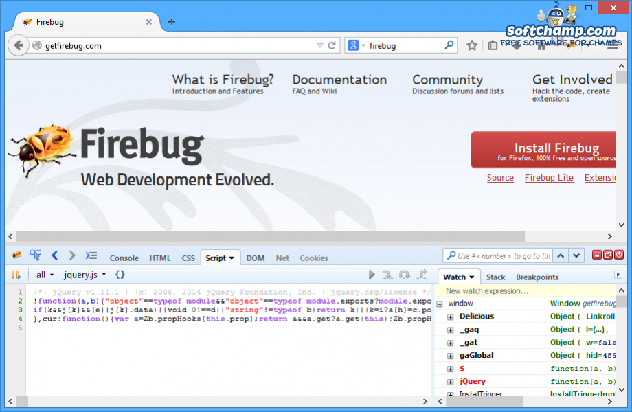 Firebug Script